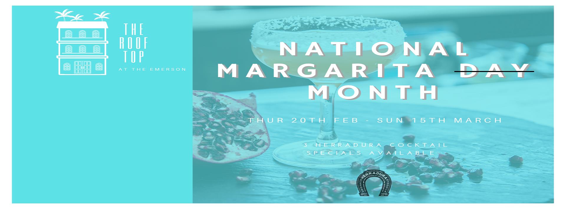 National Margarita Month Website Banner